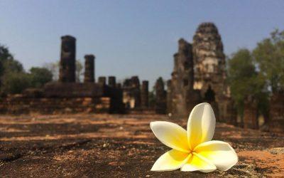 Marine en Thaïlande / 3ème partie: Ayutthaya et Sukhotai